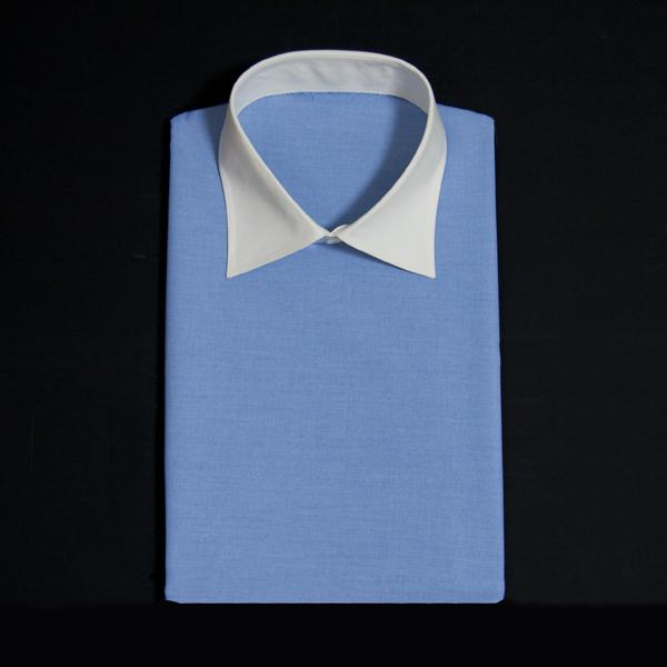 無地柄の薄いブルーでクレリック見本